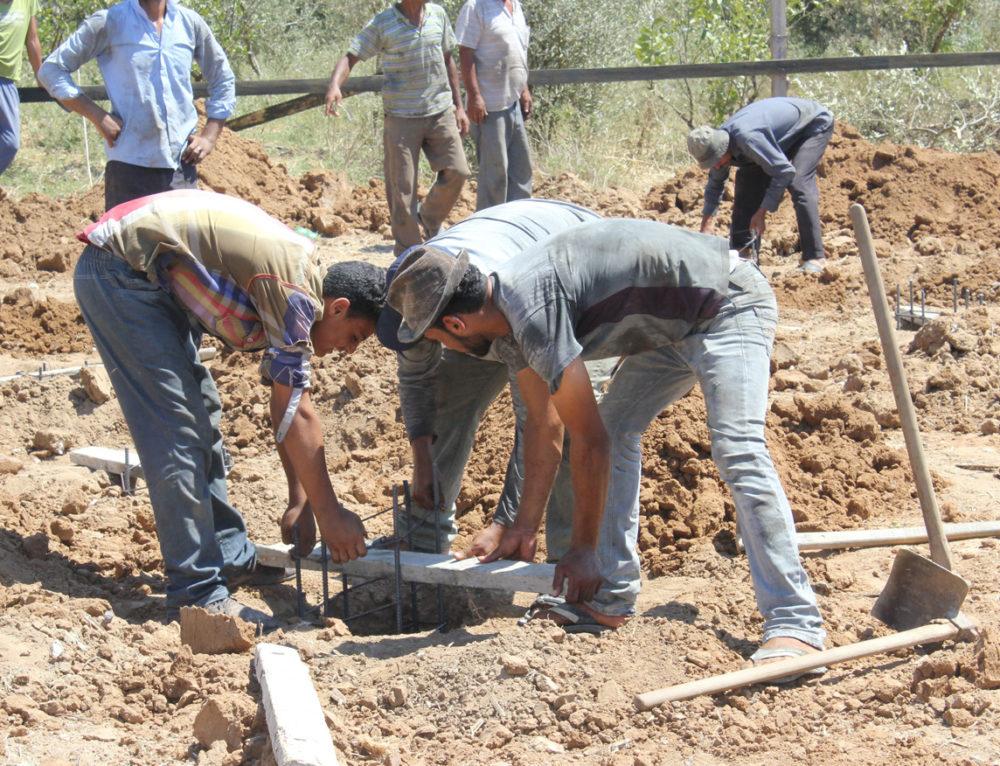 Apoyo a la generación de ingresos y capacidad productiva sostenible de pequeños productores y productoras de Gaza
