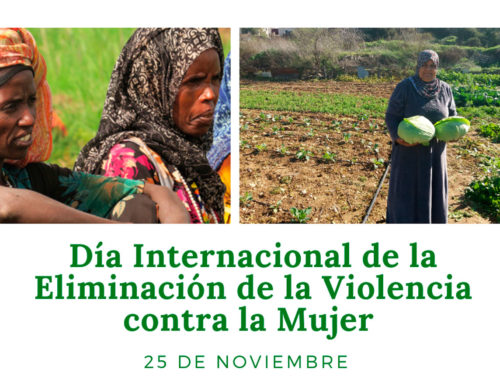 The OMEI Observatory of the Social Promotion Foundation considers inequality of opportunities between women and men as a trigger for violence against women