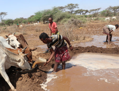 Increasing the capacity of rural people in Palestine and Ethiopia to water access and adaptation to climate change