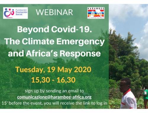 "Next webinar ""Beyond Covid-19. Climate Emergency, Africa's Responses"""