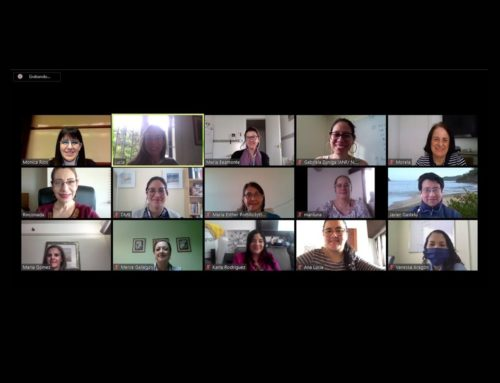 Remote meeting of civil society organizations in Latin America reflecting on the effects of COVID-19