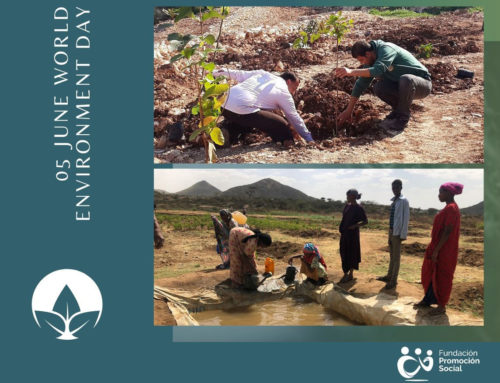 Alleviating the effects of climate change and biodiversity loss in the countries where we work is crucial